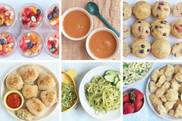 august meal plan image in grid of 6