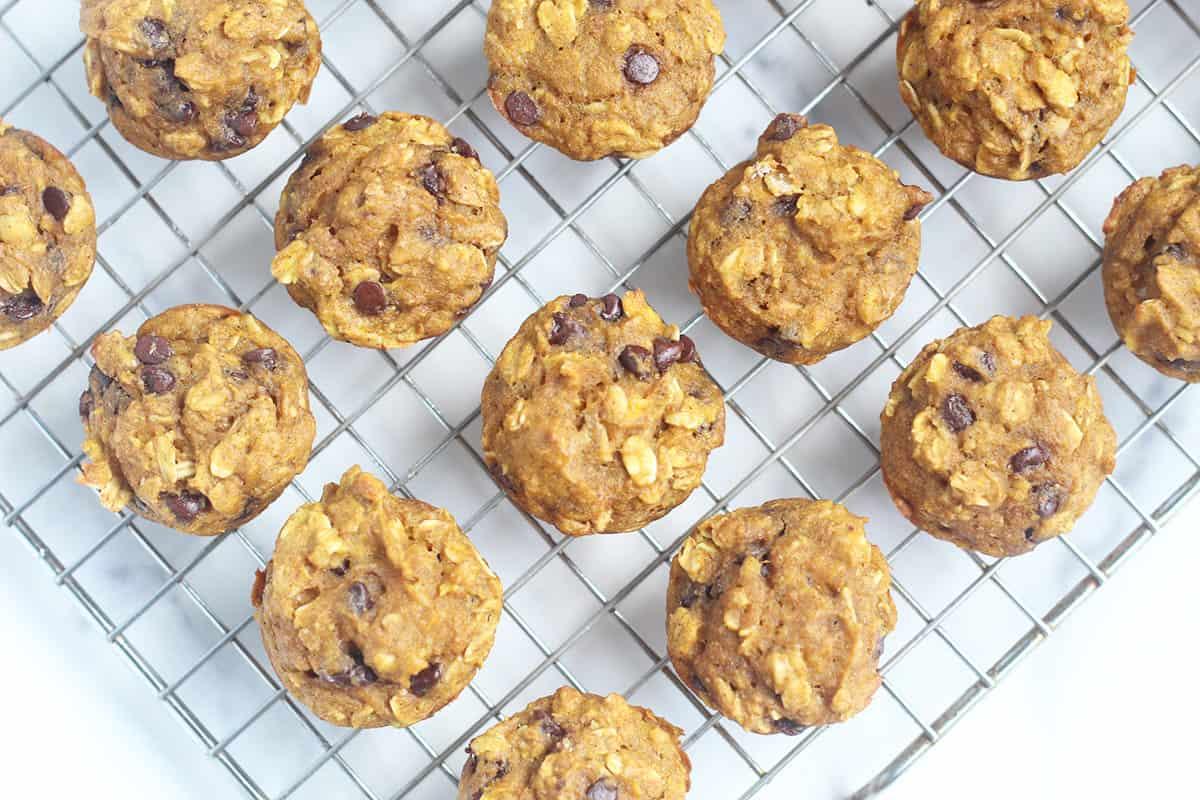 pumpkin chocolate chip muffins on wire rack